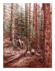 Painting of Deer in the Forest
